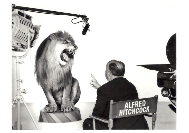 Alfred Hitchcock Directs the MGM Lion, 1958: History 1950, A Hitchcock Direction, 1958 Hitchcock, Lion 1950 S, Alfred Hitchcock, 1958 Alfred, Actor, Hitchcock Mgm, Mgm Lion