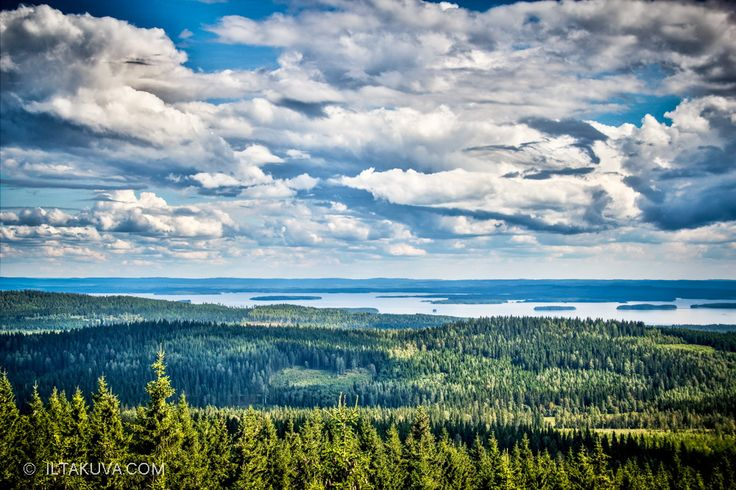 North Karelia is in Eastern Finland. The urban areas are between few and far here, and you might meet a bear if you're not careful.