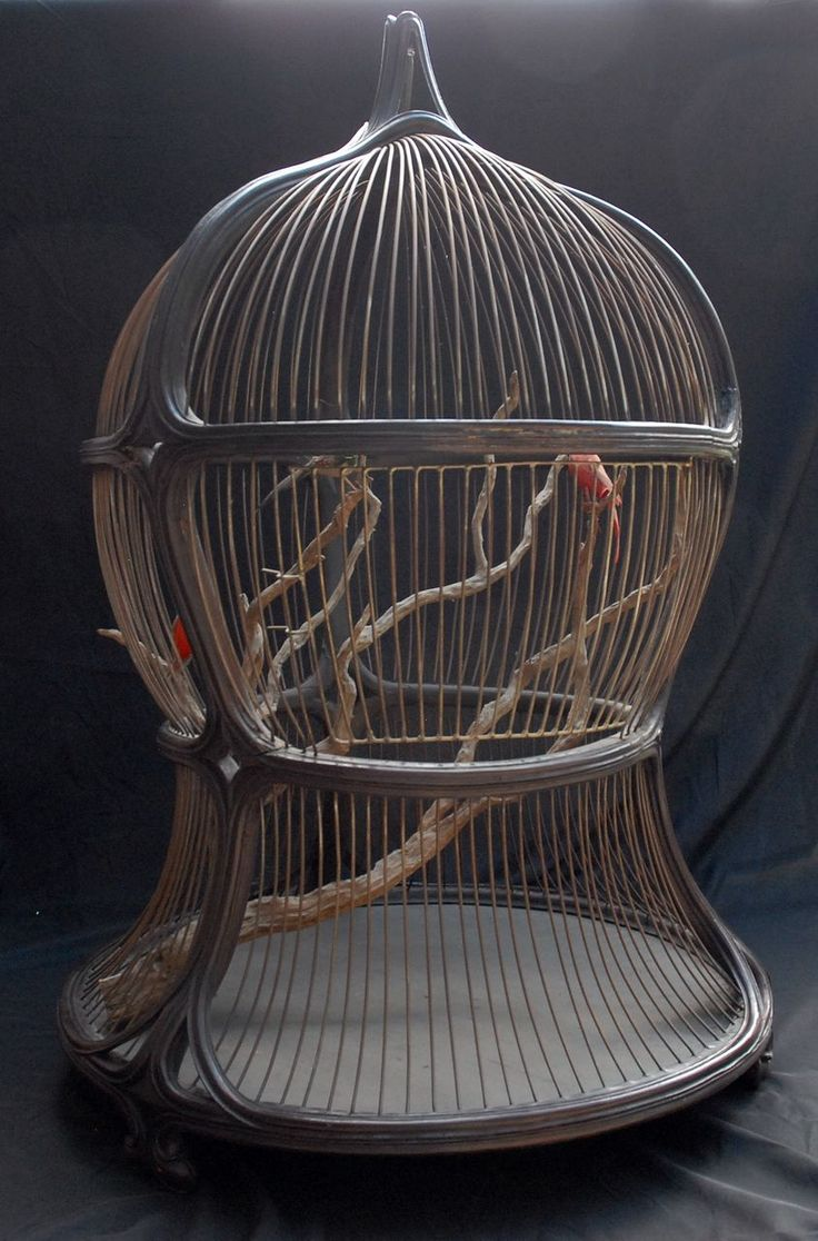25 b sta antique bird cages id erna p pinterest f gelbur for Cage d oiseau decorative