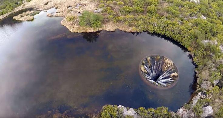 Gravado+por+drone,+vídeo+registra+espécie+de+ralo+gigante+em+ribeira+de+rio+português