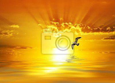 Fototapeta amanecer radiante sobre el mar calmado
