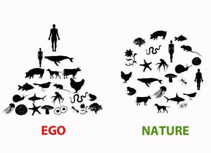 Önce doğal yaşam vardı, şimdi sadece insanın egosu... #kişiselgelişim #şahsiyeteğitimi