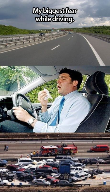 Still, my biggest fear while driving. Nooooo! Hit the image for '15 of the Funniest Car Memes'