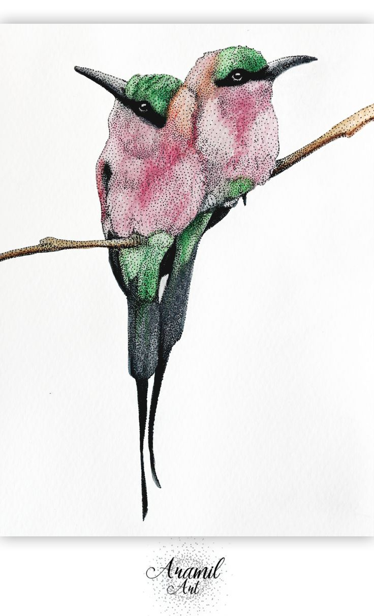 Birds drawing, created by using about a thousand dots and colored with watercolour pencil. Art by Petra Jánosi. Come and check on FB. :)  https://www.facebook.com/aramilart