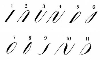 calligraphy tutorials