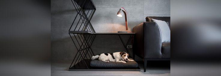 Un letto combinato del cane, una tavola laterale e un divisorio sono stati progettati per questo appartamento