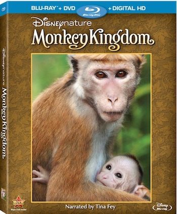 Monkey Kingdom Disneynature | Kids Movie