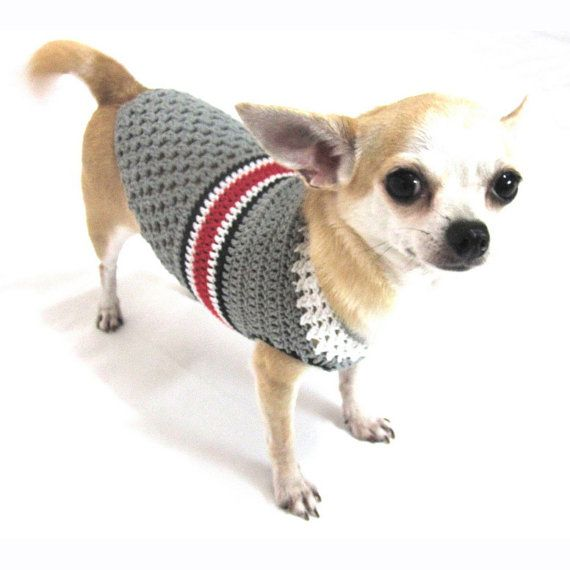 116 best chompa de lana images on Pinterest | Dog sweaters, Pets and ...