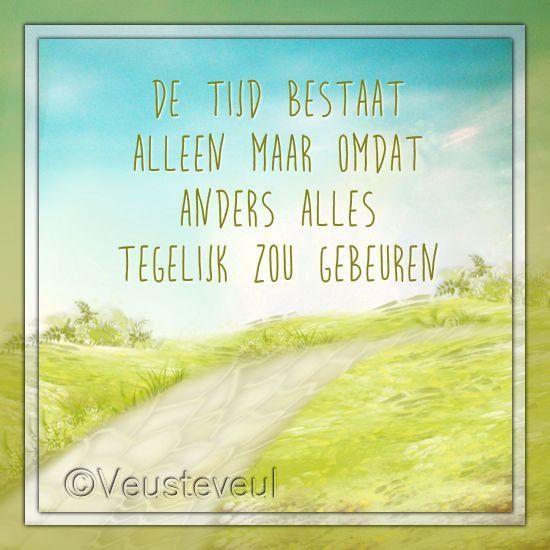 De tijd bestaat alleen maar omdat anders alles tegelijk zou gebeuren.  http://veusteveul.nl