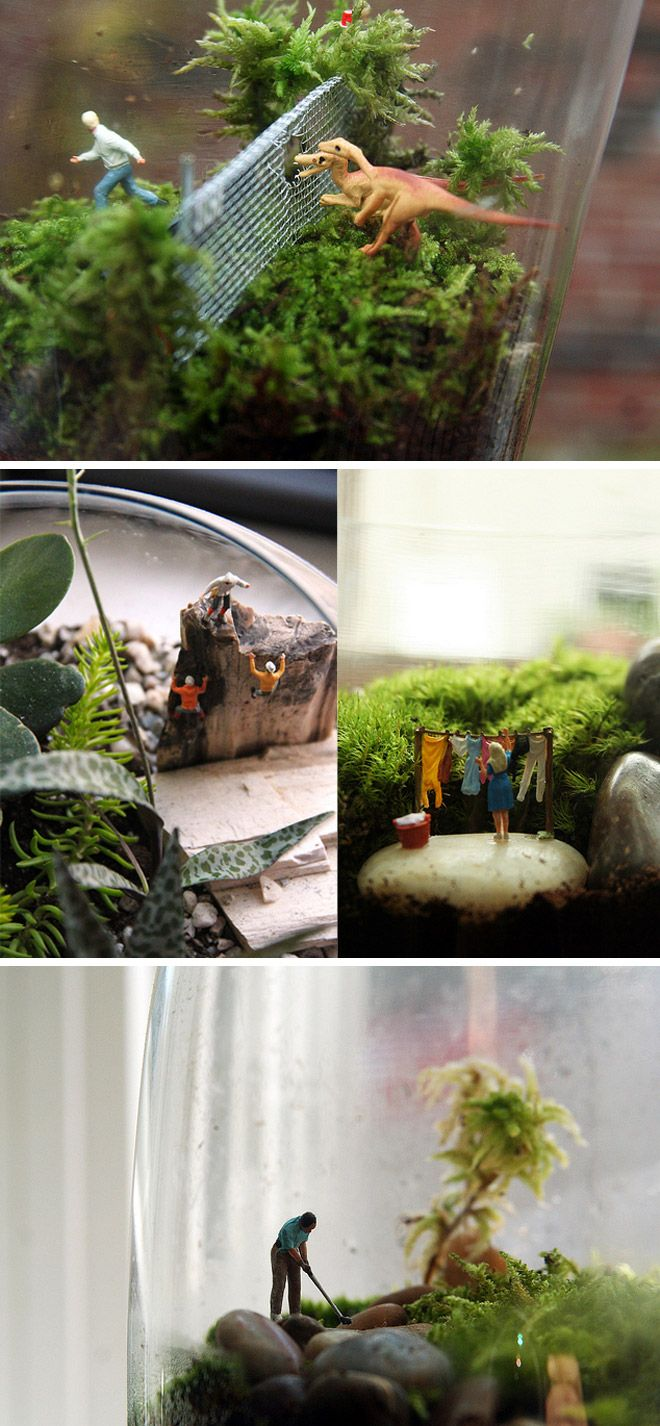 How to make a terrarium. Hopefully we will be able to make some of these for centrepieces. -the dinosaurs.