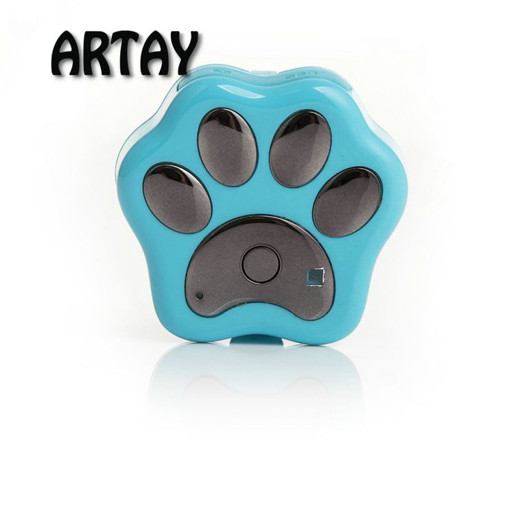 Tahan air cerdas pet anti lost V40 3G GPS WIFI real time pelacakan GPS tracker platform pelacakan gratis