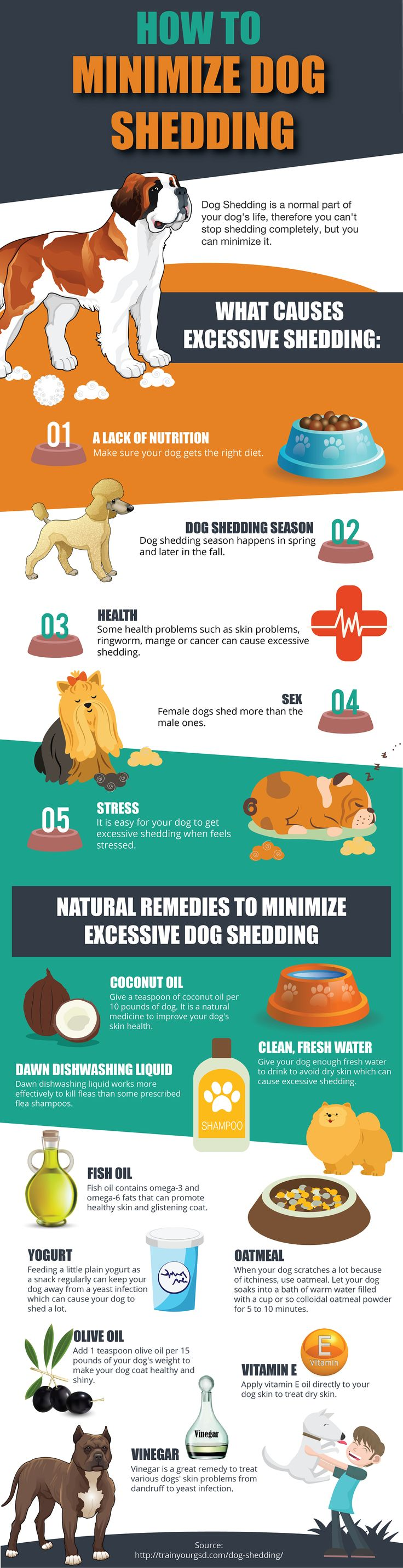 How To Minimize Dog Shedding #Infographic #Animal #Dog - Tap the pin for the most adorable pawtastic fur baby apparel! You'll love the dog clothes and cat clothes! <3