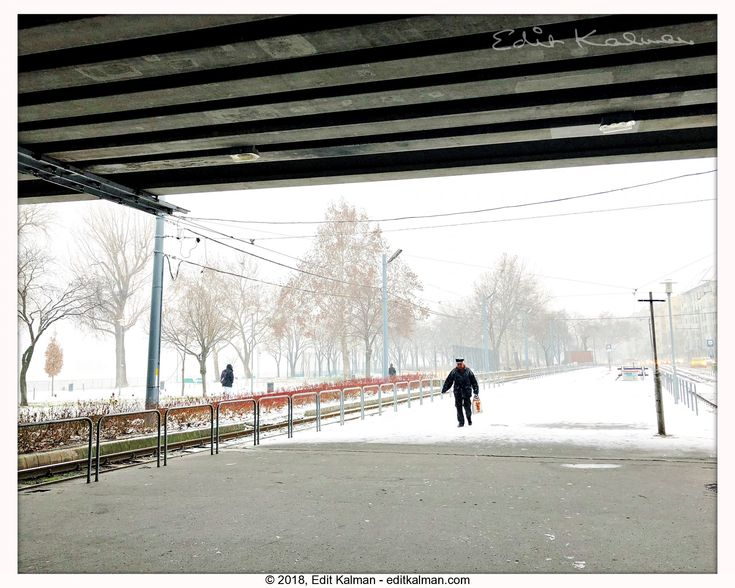 Winter comes #Alone, #Budapest, #Cold, #HumansOfBudapest, #Hungary, #Momentsinbudapest, #Morning, #Pest, #Petofibridge, #Snow, #Snowing, #Winter - https://goo.gl/vao8bh