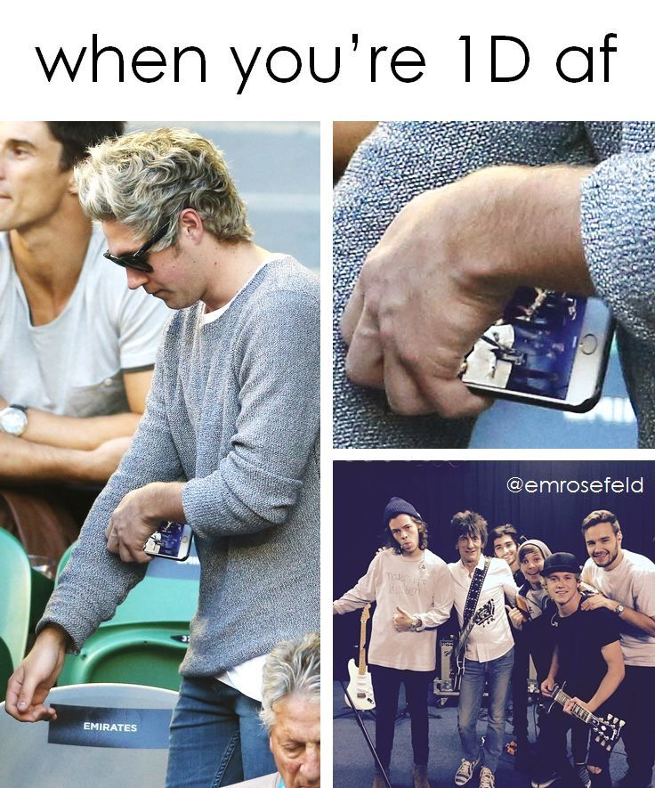When Niall is one of the hugest 1D fans in the world...