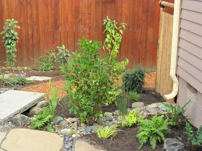 10 Solutions for Soggy Soil If a too-wet garden is raining on your parade, try these water-loving plants and other ideas for handling all of that H2O