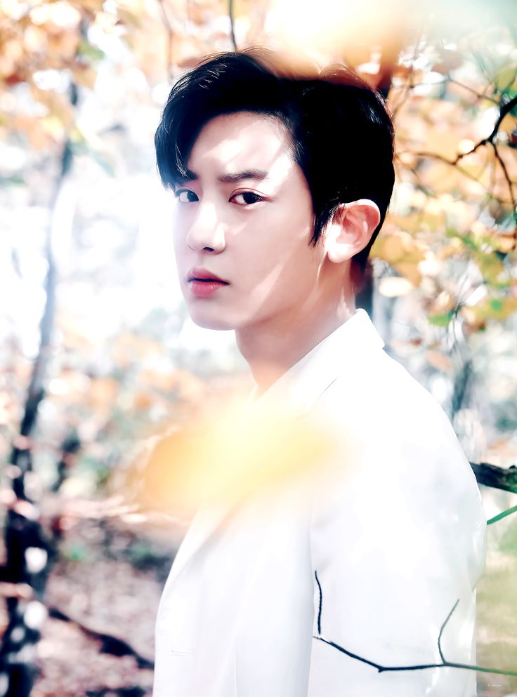 #Chanyeol #Yeollie [OFFICIAL] EXO PLANET #4 - The EℓyXiOn Goods