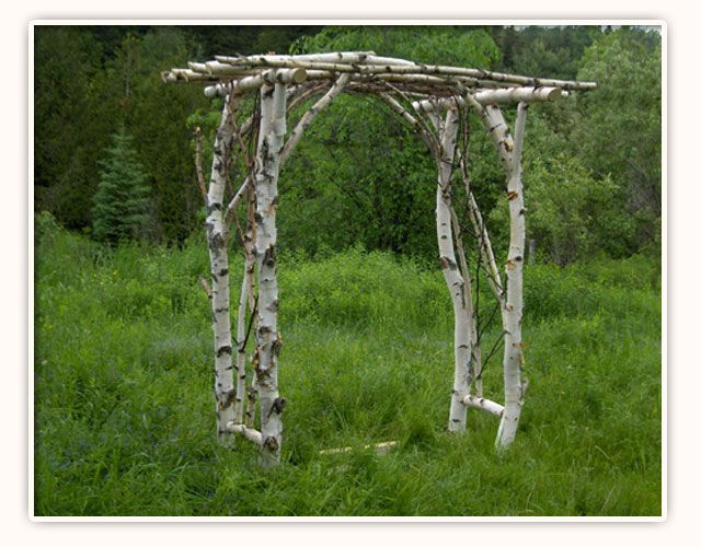 I like the way they used the branches already on the cut limbs to form part of the trellis.