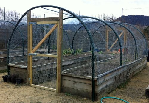 Enclosed garden with screened door entry. Good way to keep out deer, rabbits, birds and other pests but allow bugs and bees if you use chicken wire.