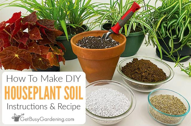 How To Make Potting Soil For Indoor Plants Potting Soil Plant Care Houseplant House Plant Care
