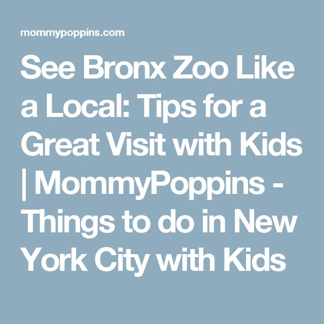 See Bronx Zoo Like a Local: Tips for a Great Visit with Kids   MommyPoppins - Things to do in New York City with Kids