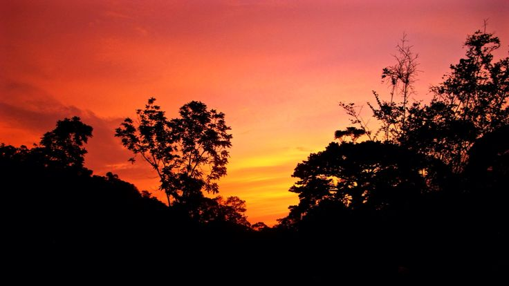 Sunset in the #Darien #jungle #colombia #southamerica #travel #trip