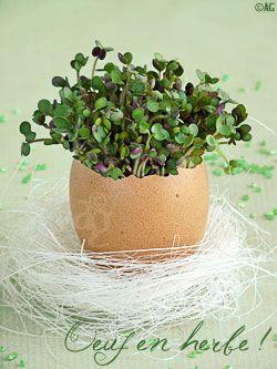 Idée déco pour la table de Pâques ! Et pour mieux connaître cette fête, c'est par ici : http://www.very-utile.com/fete-paques.php