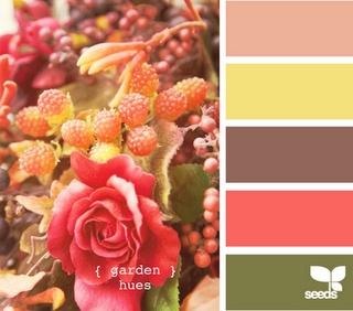 design seeds