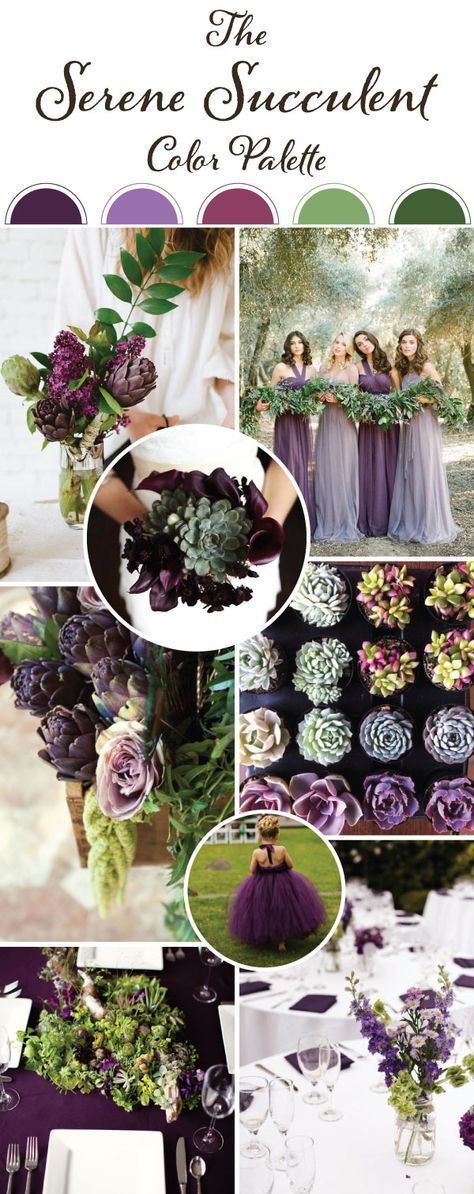 The succulent decor trend is still trending, and we can't get enough of it! We created this palette with the succulent's beauty and grace in mind. The primary color is a bold eggplant accented with hints of lavender and fuchsia Find your dream decor at www.pinterest.com/laurenweds/wedding-decor?utm_content=buffer73d98&utm_medium=social&utm_source=pinterest.com&utm_campaign=buffer