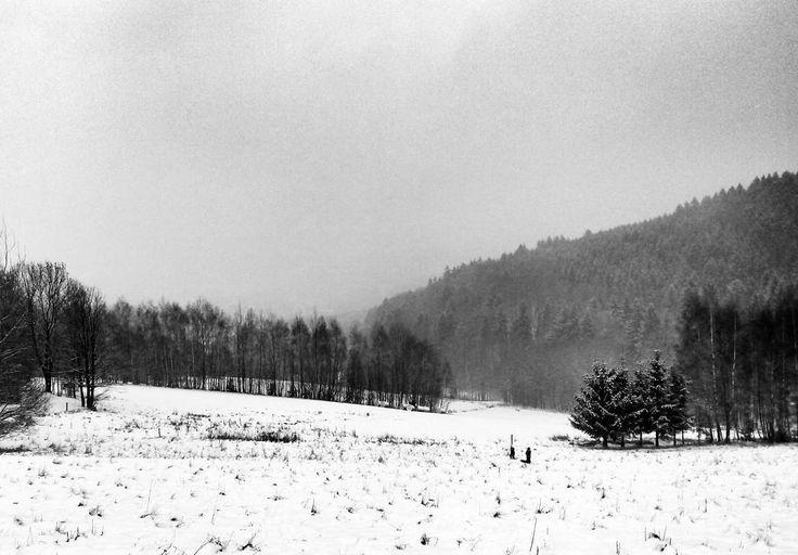 #winter #snow#forrest #blackandwhite #blackandwhitephotography #mobilephotography #igraczech #igers #igerscz #igraczech #czech_world #czech_insta