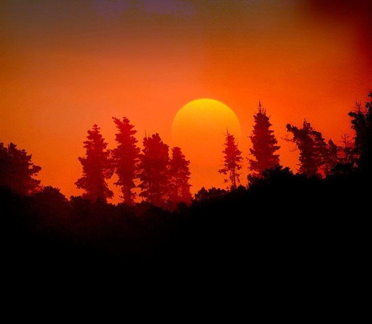 Amazing Sunsets, Beautiful Nature