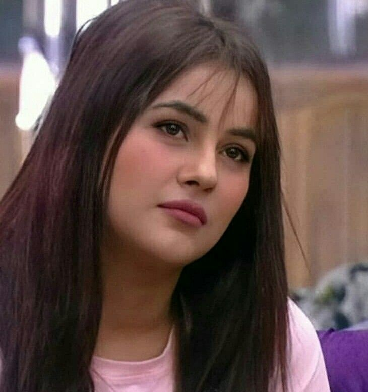 Pin By Inderjit Kaur On Shenaaz The Gem Katrina Kaif Photo Punjabi Actress Punjabi Models