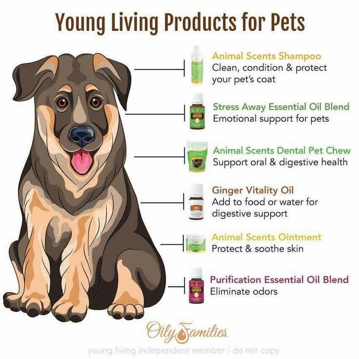 Young Living Essential Oils: Pets                                                                                                                                                     More
