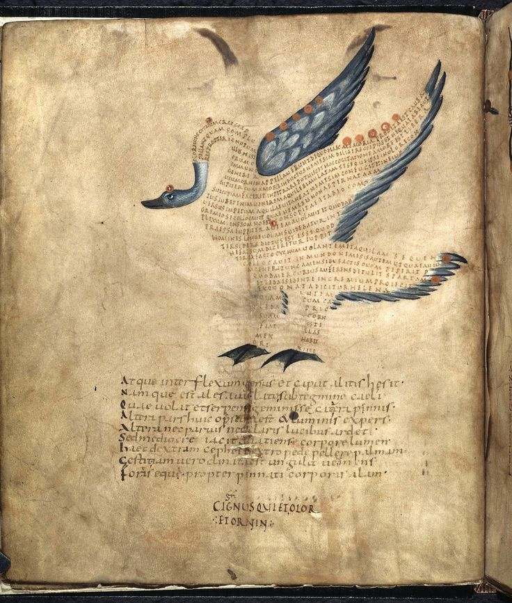 "Inspiration ... TYWKIWDBI (""Tai-Wiki-Widbee""): A remarkable 9th-century swan. This is a special book from the early Middle Ages (France, 9th century). Not only does it contain a high volume of very attractive images, but these images are also not what you would expect: they are drawn, as it were, with words. They illustrate Cicero's Aratea, a work of astronomy. Each animal represents a constellation and the written words in them are taken from an explanatory text by Hyginus (his…"