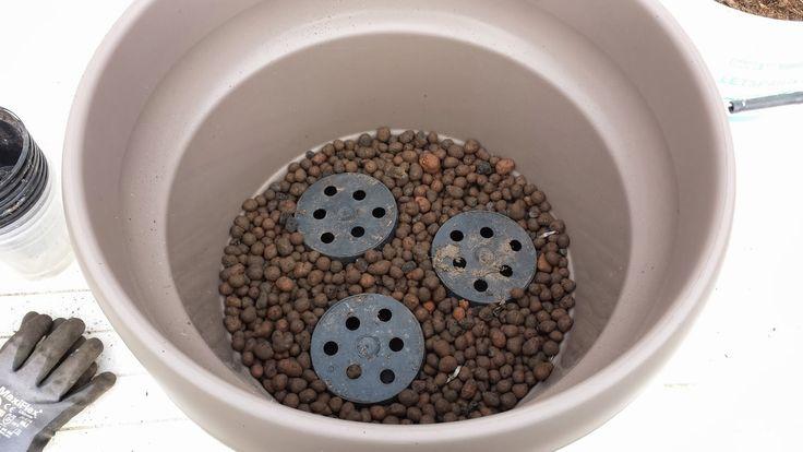 HAVEHJERNEN Reservior til vand i potte