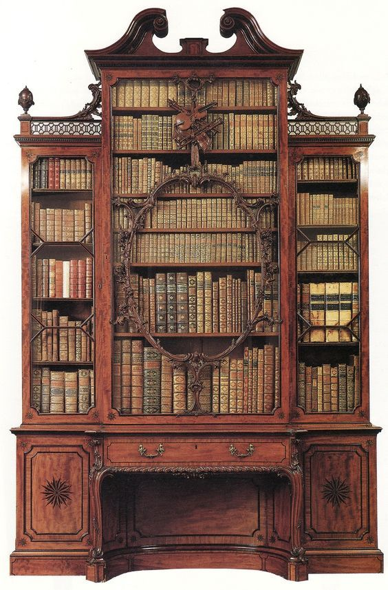 Gorgeous library case
