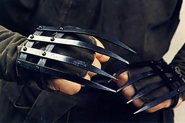 ~Tekkokagi Shinobi Claws~