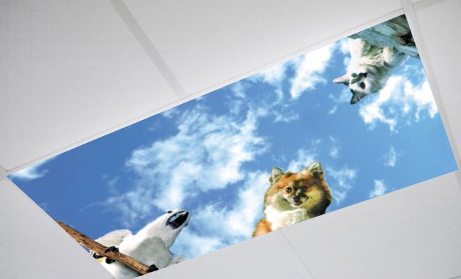 unique light from sky pictures to pin on pinsdaddy fluorescent light covers pets fluorescent light covers 225
