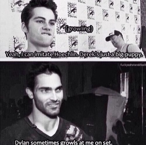 Now I'm going to look up all the Teen Wolf things. Because I can. Because I'm finally caught up.