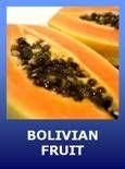 Bolivian Recipes. Bolivian Food, Desserts, Pastries, Snacks, Drinks.