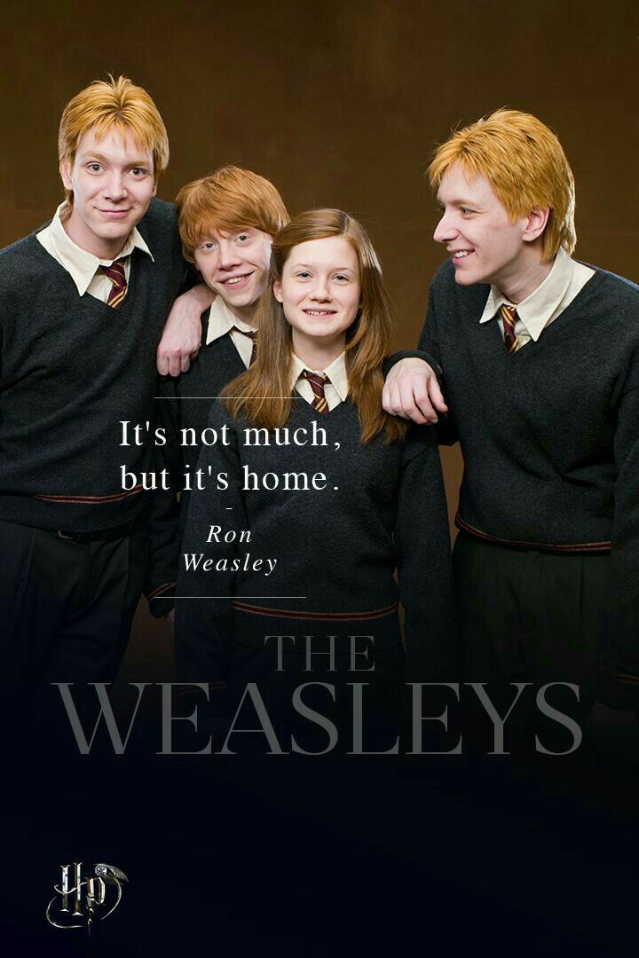 The Weasley Family Personajes De Harry Potter Fotos De Harry