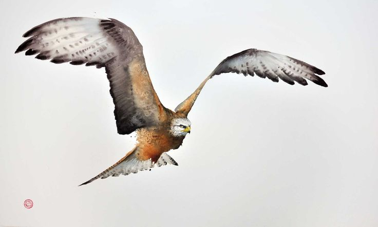 Karl Martens, Red Kite II