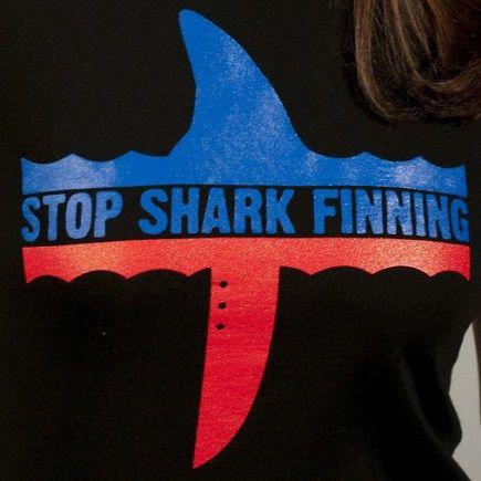 Stop shark finning black organic cotton T-shirt