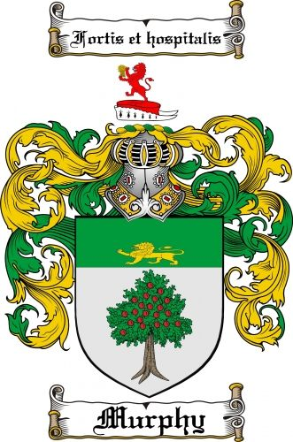 Crest of the Murphys of Wexford: a lion on a helmet over a shield depicting a lion and a tree