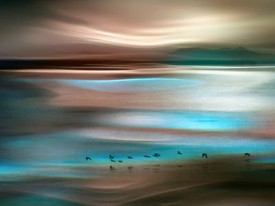 Migrations Stretched Canvas Print by Ursula Abresch at Art.com