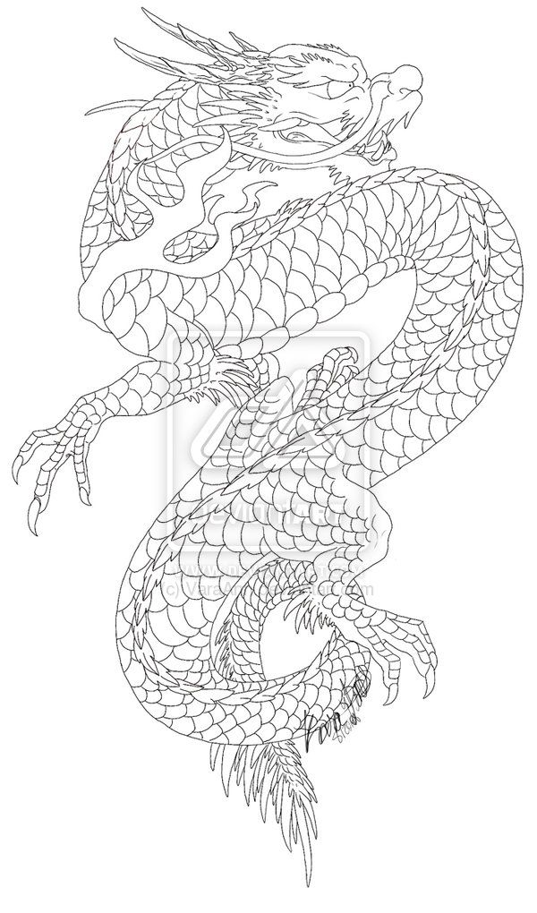 Japanese Dragon Outline | japanese dragon japanese tattoos