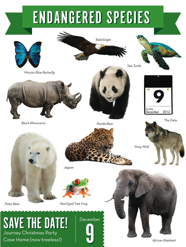 Save the Date! Endangered Species. Endangered animals