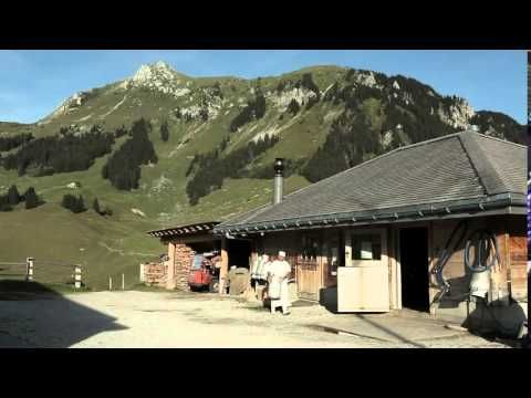 Os esplêndidos suiços