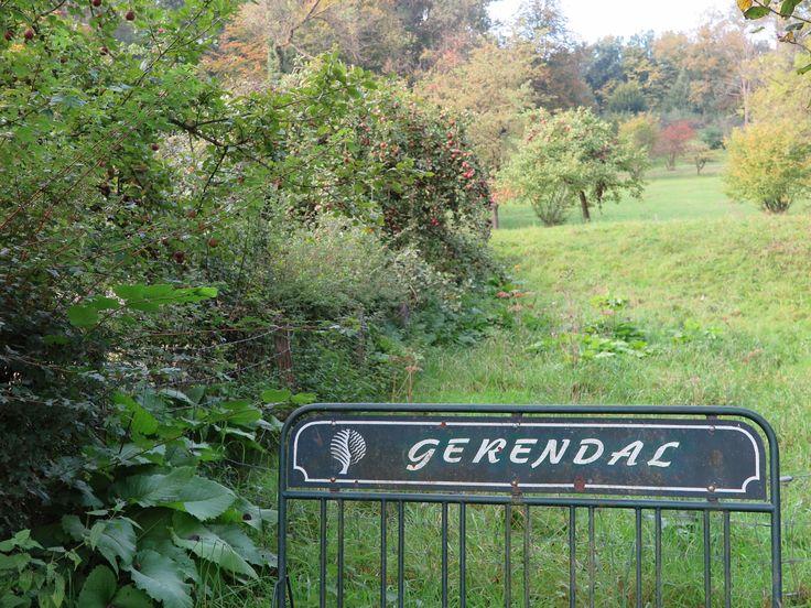 Orchideeëntuin Gerendal, Valkenburg a/d Geul, Zuid-Limburg
