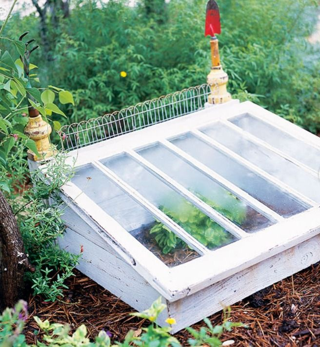 Mini Greenhouse. Could use an old vintage window instead.