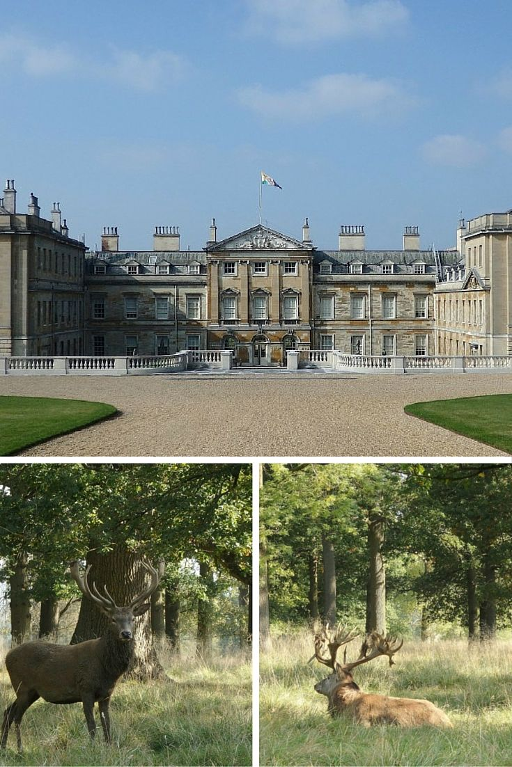 England Travel Inspiration - Exploring the stately home of Woburn Abbey and Gardens in Bedfordshire England.  The Duchess of Bedford started the afternoon tea trend and you can have afternoon tea in the Duchess Tea Rooms.  Click the link to read more about Bedfordshire and my travel tips for the county.